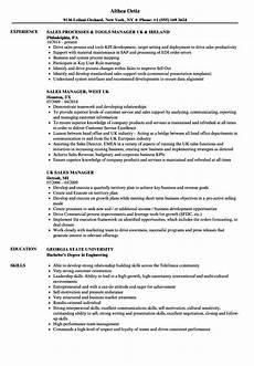 Uk Resume Example Uk Sales Manager Resume Samples Velvet Jobs