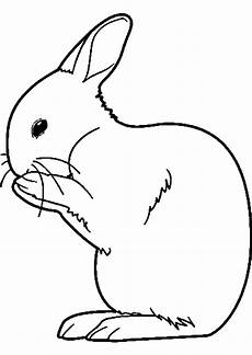 Malvorlage Hase Pdf Hasen Ausmalbilder Kostenlos Malvorlagen Windowcolor Zum