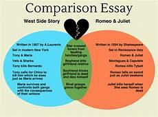 Comparison Essays Topics Comparison Essay Writing