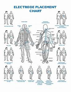 Electrode Placement For Electrical Stimulation Chart Electrode Placement Chart