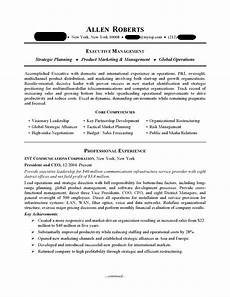 Ceo Resume Sample Doc Ceo Amp Executive Resume Sample Professional Resume