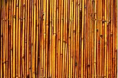 Bamboo Texture Free Photo Bamboo Texture Bamboo Texture Wood Free