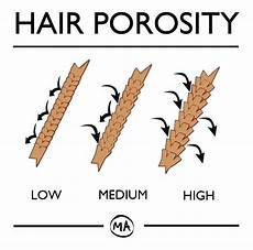 Hair Porosity Chart 23 Best High Porosity Hair Products For Stronger Hair