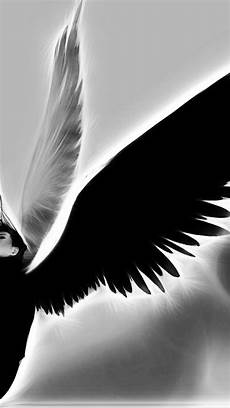 Wallpaper Iphone Black And White by Black And White Iphone Backgrounds Hd Wallpapers