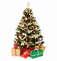 Free Images Of Christmas Trees Christmas Tree Png Images Free Download
