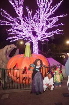 Zoo Lights St Louis Hours Hours Amp Prices Saint Louis Zoo