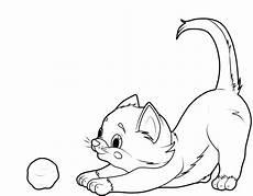 susse baby katzen ausmalbilder malvorlagen