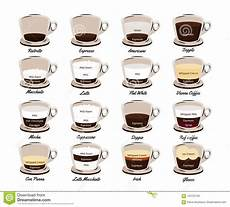 Different Types Of Coffee Types Of Coffee Coffee Drinks Vector Illustration Stock