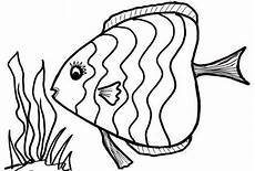 8 fish coloring pages jpg ai illustrator free