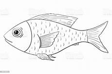 fish outline doodle stock illustration image