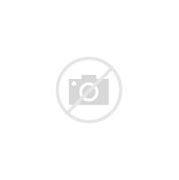 Image result for acomrtividad