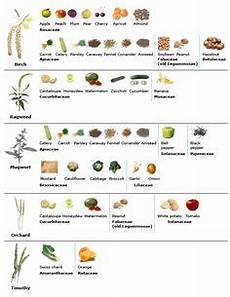 Allergy Syndrome Food Chart Low Histamine Diet Recipes And News For Food Allergies