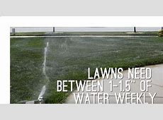 HOW OFTEN SHOULD I WATER MY LAWN?   Elkhart Irrigation