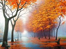 Autumn Powerpoint Background Road In Autumn Background For Powerpoint Nature Ppt