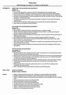 Business Resume Samples Business Development Resume Mt Home Arts