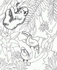 free printable zoo coloring pages for