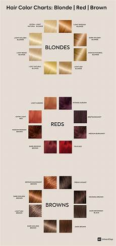 Hair Dye Colour Chart How To Choose The Best Hair Colour From Hair Colour Charts
