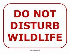 Do Not Disturb Signs Printable Printable Do Not Disturb Wildlife Sign Sign