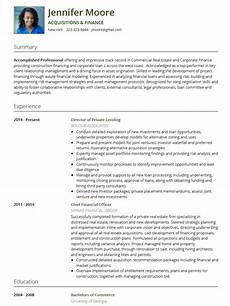 A Cv Example Cv Templates 20 Options To Improve Your Cv Visualcv