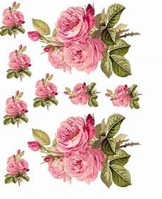 Blumen Malvorlagen Xl Malvorlagen Tiffanylovesbooks