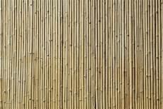 Bamboo Texture Bamboo Texture Wall Mural Amp Photo Wallpaper Photowall