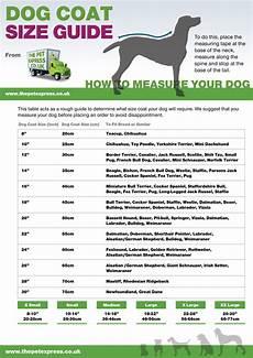 Hurtta Dog Coat Size Chart Dog Coat Size Guide Visual Ly