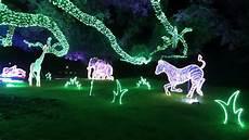 Houston Lights 2017 Incredible Lights And Dancing Rhinos Houston Zoo Lights