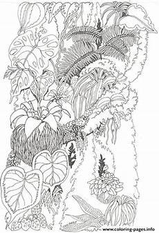 Malvorlagen Urwald Umbrella Mural Coloring Tree Trunk 1 By Jan Brett Coloring