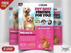 Pet Flyer Pet Care Flyer Psd Template Psd Zone
