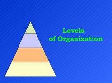 Levels Of Organization Levels Of Organization