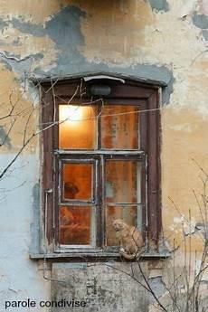 fioriere per davanzale finestra una conchiglia riecheggia il rumore mare il legno di