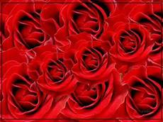 hinder bed of roses lyrics