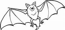 Fledermaus Malvorlagen Bats Flying Coloring Page Color Fruit
