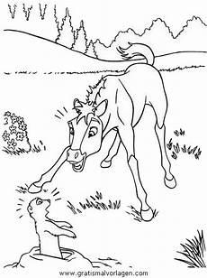 pferde 51 gratis malvorlage in pferde tiere ausmalen