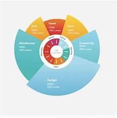 Circadian Rhythm Chart Lighting And Circadian Rhythm Affect Health And Productivity