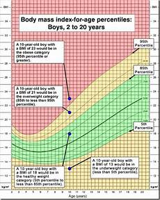 Youtube Girl Chart Bmi And Kids Why It S Bullshit Amy Ever After