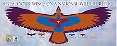 Bird Wingspan Chart California Condor Wingspan Google Search Arts304