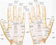 Hand Chart 12 Steps How To Apply Reflexology To The Hand With Pictures
