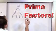 What Is Prime Factorization Prime Factorization 5th Grade Math Finding Factors Of