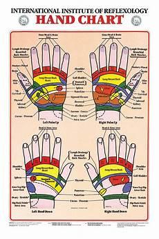 Reflexology Chart Hand Reflexology Chart Charts Hand Chart 17 X 21