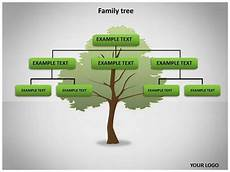 Family Tree Presentation Where Can You Find A Family Tree Template