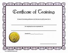 Certificate Of Training Template Free 30 Training Certificate Templates Samples Examples Format