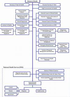 Rural Hospital Organizational Chart Organizational Chart Of Ministry Of Health Structure