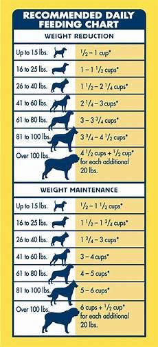 Pedigree Puppy Feeding Chart Pin On Pet Lovers Pet Health Pet Care