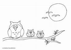 Malvorlage Vogel Auf Ast Eulen Auf Ast Mit Mond Und V 246 Geln Nadines Ausmalbilder
