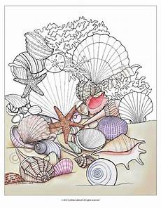 Printable Pictures Of Seashells Seashells Coloring Page Instant Download
