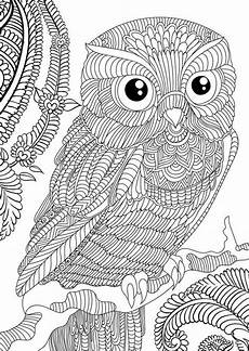 Free Owl Coloring Pages Owl Coloring Pages For Adults Free Detailed Owl Coloring