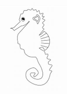 Quallen Malvorlagen Zum Ausdrucken Ausmalbilder Fische Krebse Seepferdchen Kraken Quallen