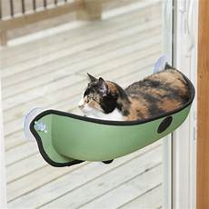 cat window hammock with cushion suction cup when you
