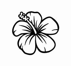 Malvorlagen Hawaii Blumen Easy To Draw Hawaiian Flowers Leichte